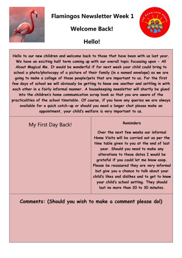 thumbnail of Flamingos Newsletter 10th September 2018