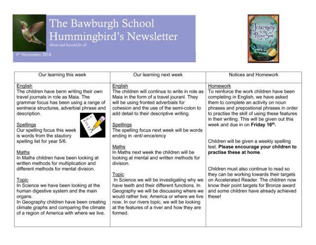 thumbnail of News letter Nov 8th