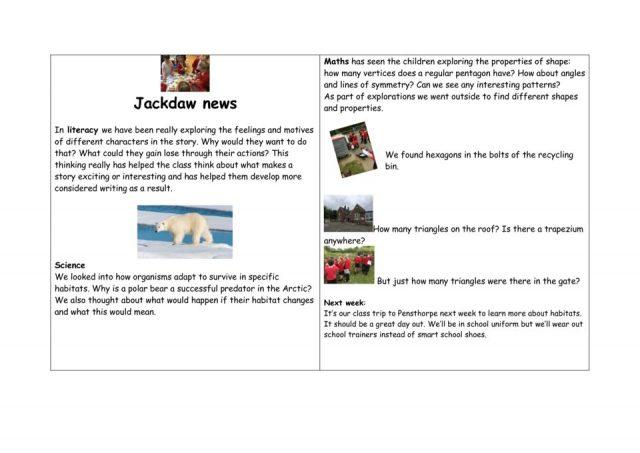 thumbnail of Jackdaw – news WK 20